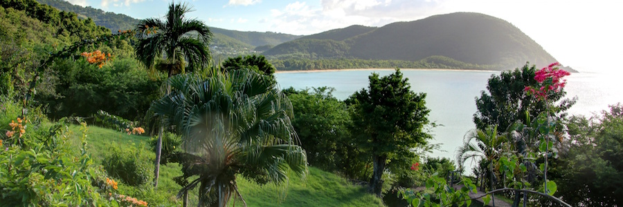 basse terre guadeloupe